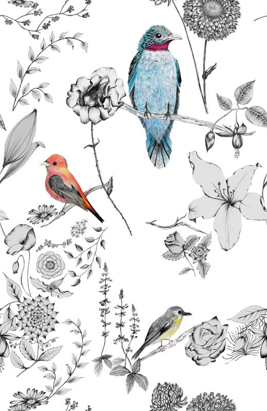 Hand drawn tropical birds and flowers woven together in a repeating pattern. Making designer wallpaper.