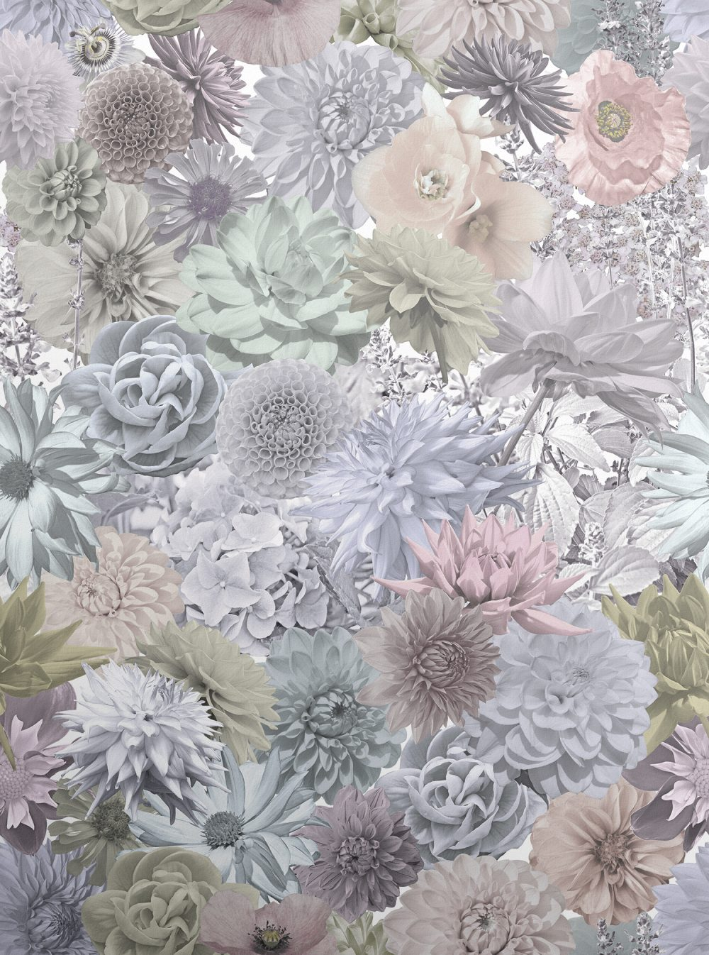 Floral Collage Wallpaper Photographed Pastel Flowers Surface House