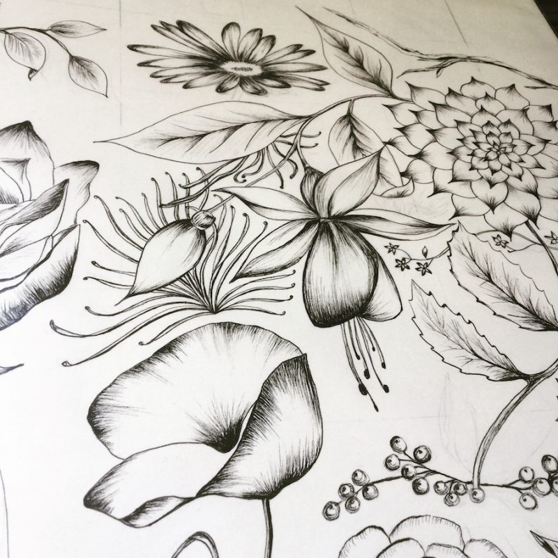 Freehand drawn artwork /imagery of floral pattern. Using Unpin fineliner pens. used for the Birds and Flowers Wallpaper.